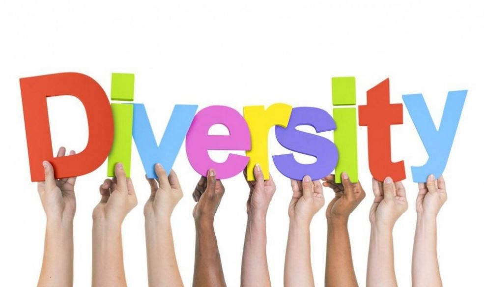 DIVERSITY IN ORGANISATIONS EPUB