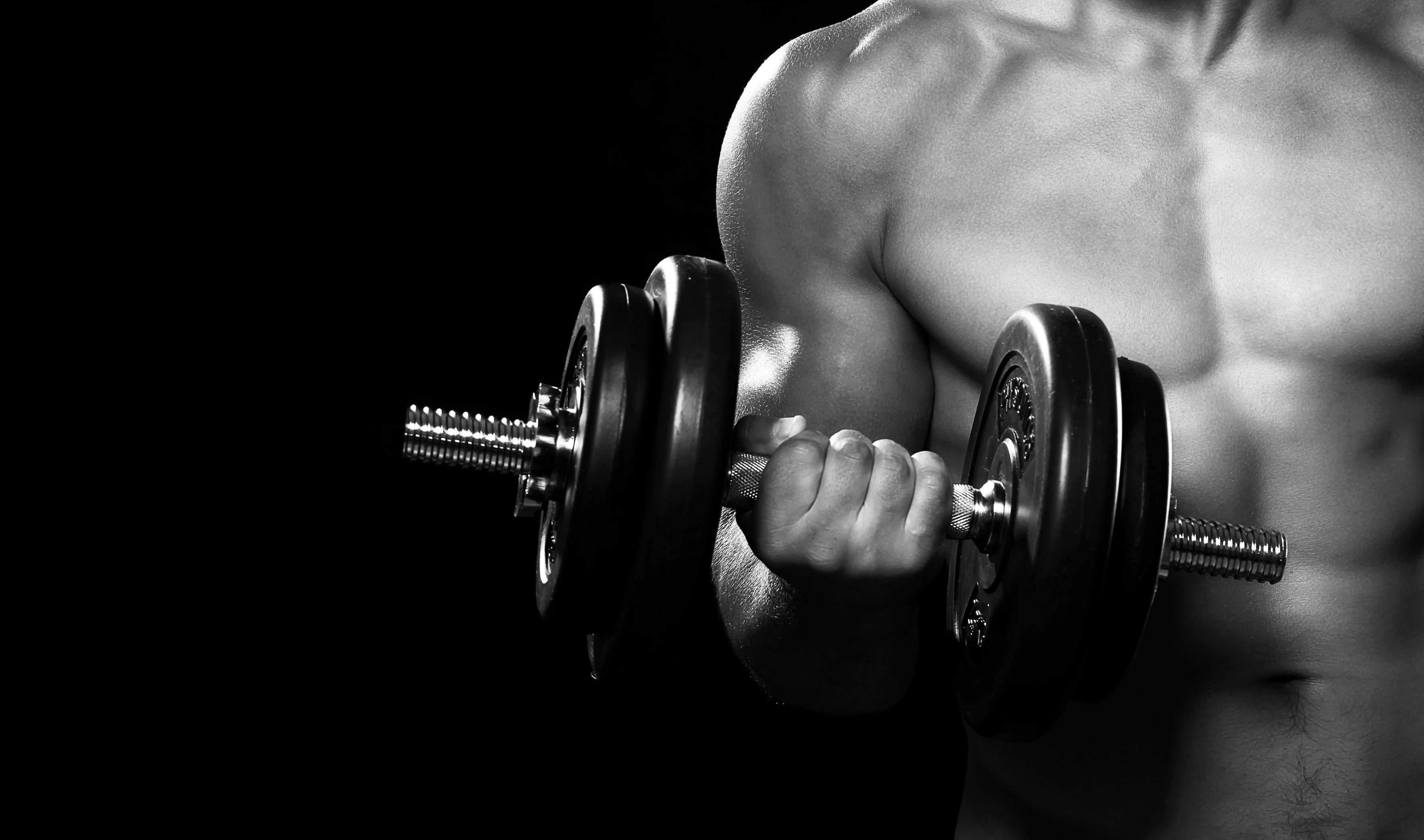 Pin On Sfondi Gym images hd wallpaper download