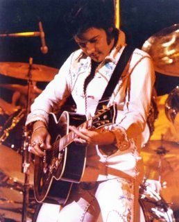 Elvis Jumpsuits Costumes Fashion on Stage