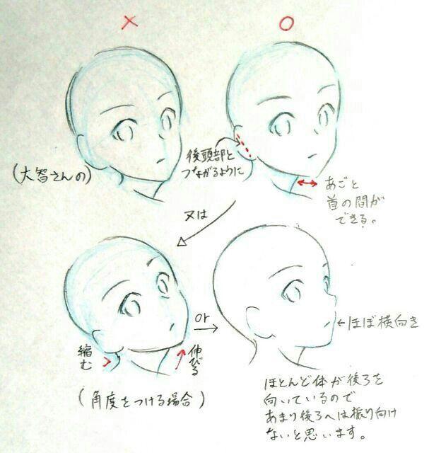 Hola! E recopilado imagenes con tips de dibujo que les podrians servir ,eso (*^ω^)