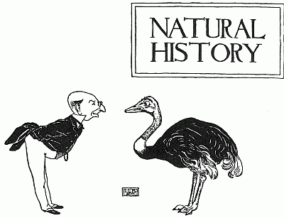 Natural History The Nursery Rhyme Book Edited By Andrew Lang 1898 Leonard Leslie Brooke Pinterest And