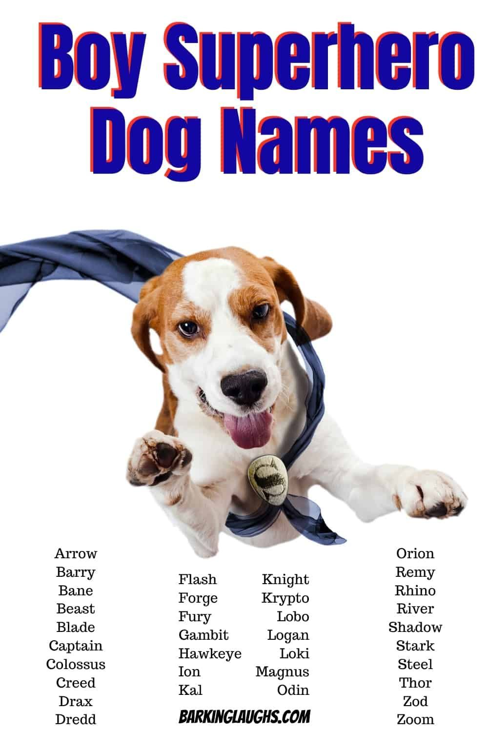 Some Boy Superhero Dog Names Are You Looking For Awesome Male Dog Names We Have Over 350 Boy Dog Names With In 2020 Boy Dog Names Good Boy Dog Names Dogs Names List