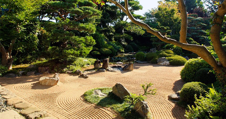 Jardin japonais zen fleurs jardins pinterest zen for Jardin zen japonais