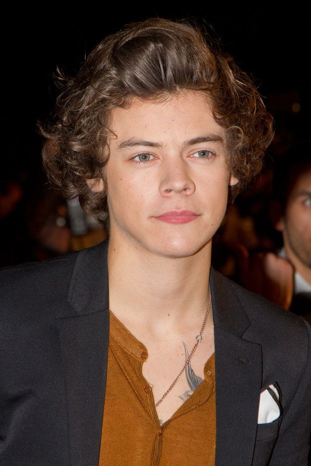 27 Times Harry Styles Hair Cried Out For Help Harry Styles Hair Harry Styles Harry Styles Haircut