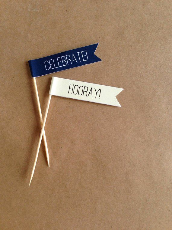 24 Cupcake Toppers / Food Pick / Banner on Stick / Flag on