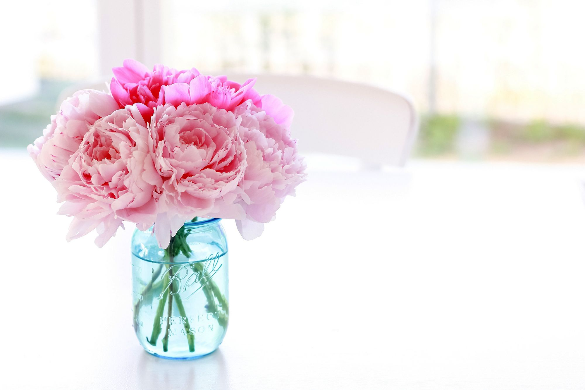 Peonies Bouquet Wallpaper Peonies Jar Pink Color Flowers Flowers