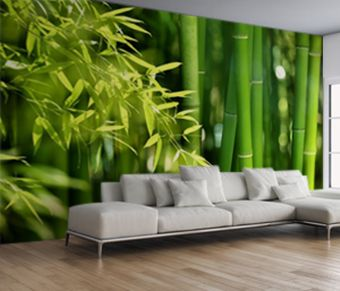 Fototapete Bambus Mit Bildern Fototapete Tapeten Weisse Wande