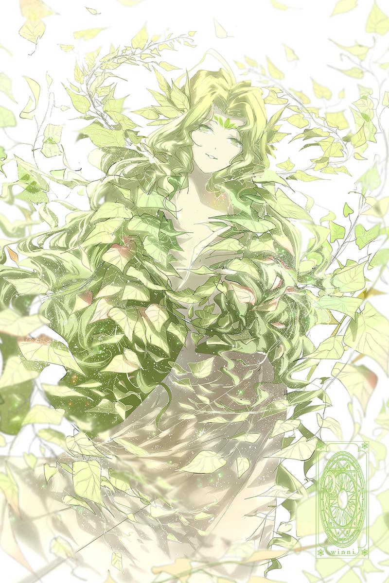 Woods - Bosque                                                                                                                                                                                 Más