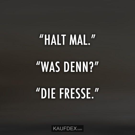 """Halt Mal."" ""Was denn? ""Die Fresse."""