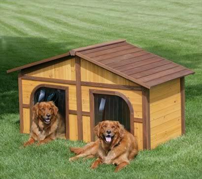 Two Door Dog House Dog Stuff Pinterest Dog Houses Dog And House