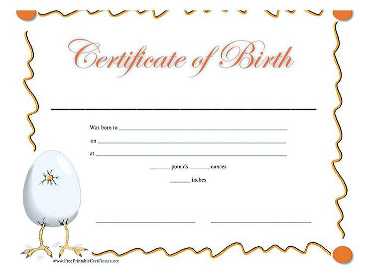 Cute Looking Birth Certificate Template Birth Certificate Template