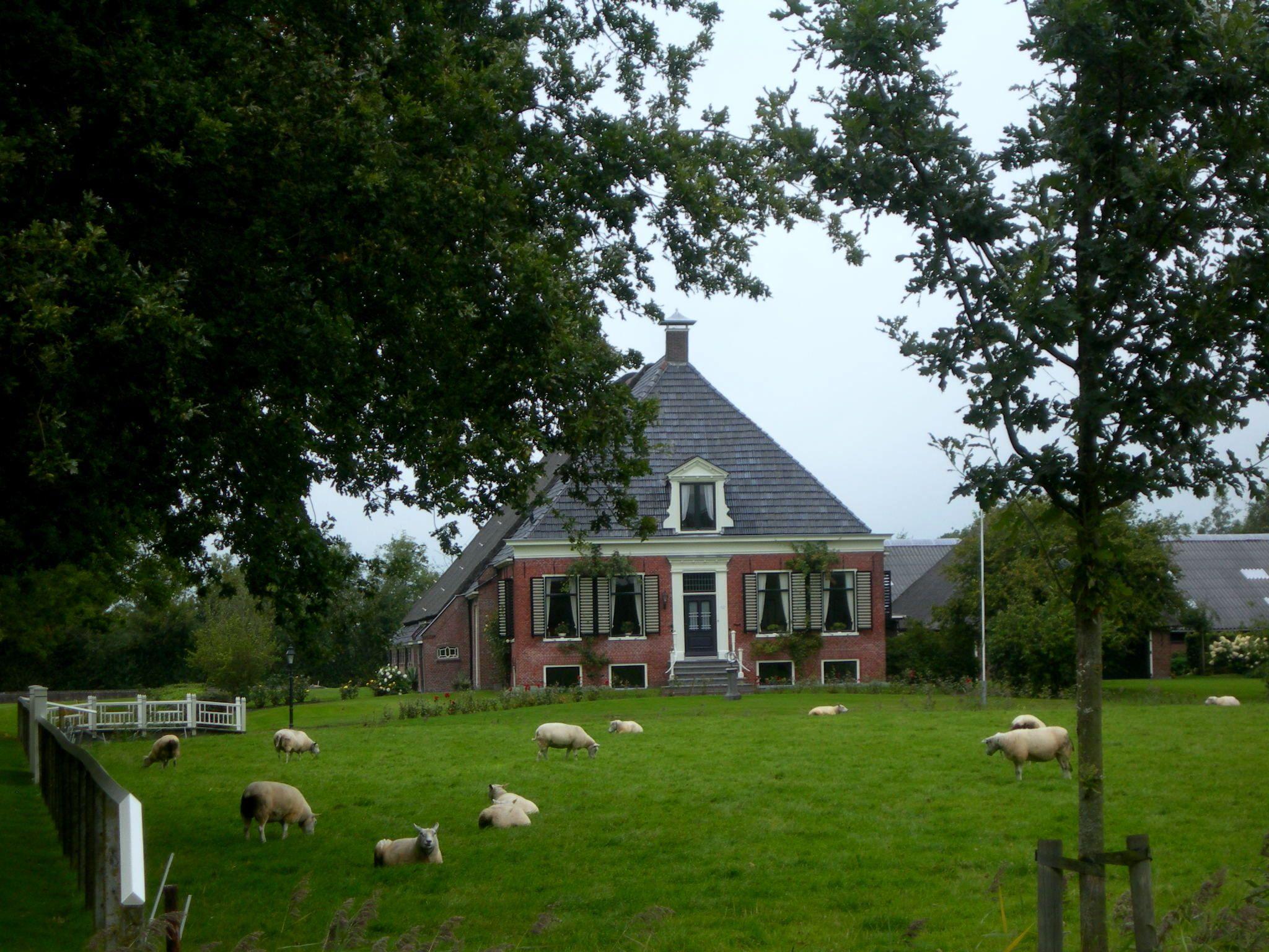 een Boerderij in Buitenpost. eigen foto. Friesland