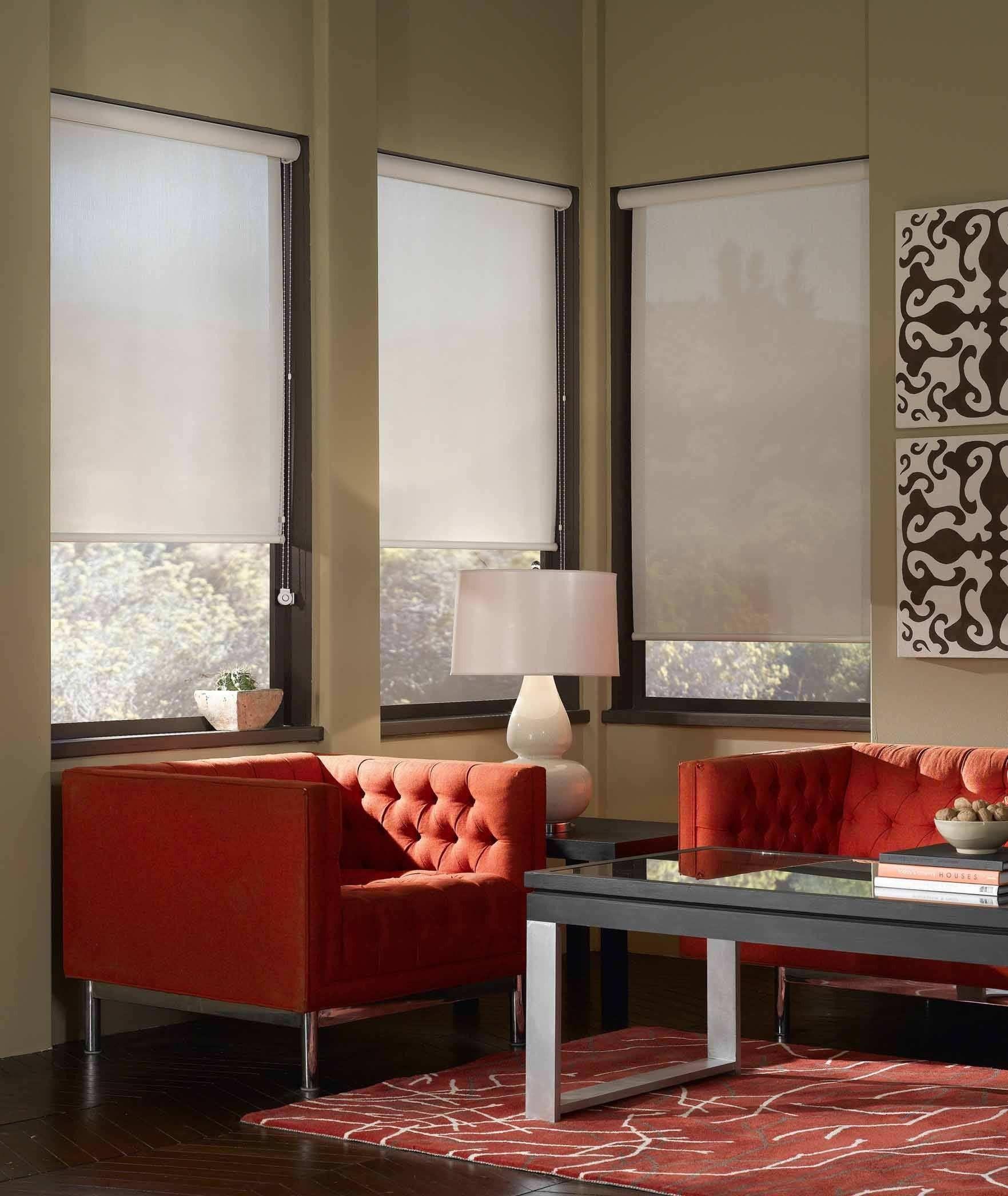 Eco Friendly Window Fashions The Solar Shades Living