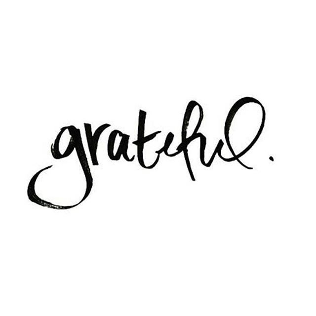 comment below someone or something you are grateful for