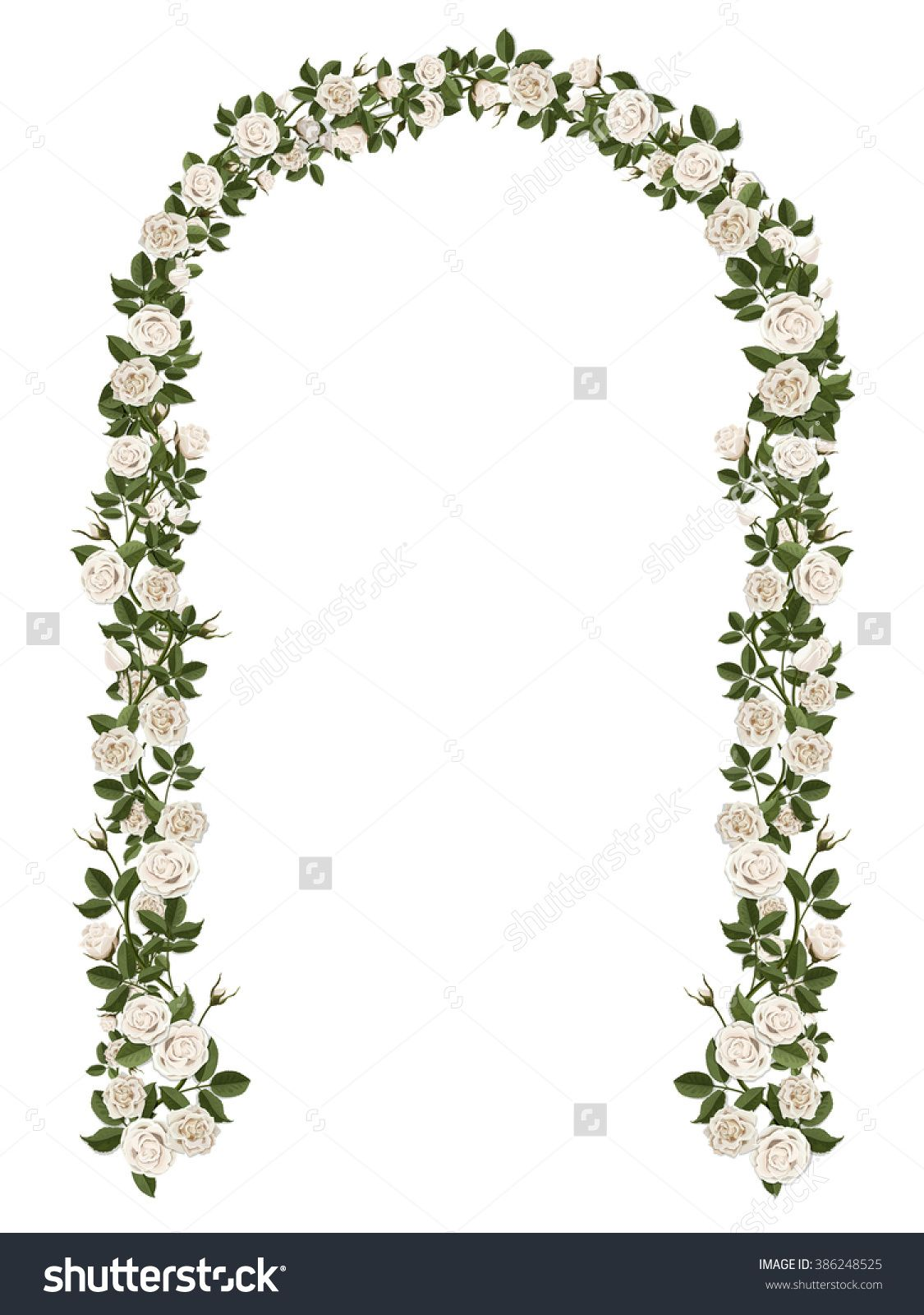 Arch Of White Climbing Roses Floral Design Wedding Decoration Vector White Climbing Roses Climbing Roses Wedding Backdrop Design