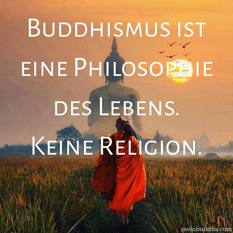Meinbuddha On Instagram Die Philosophie Des Lebens Buddha Buddhismus Meditation Philosophie Yoga Meditation Quotes Life Philosophy Buddhism Meditation