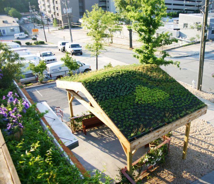roof planting serene sun house | green roof on pergola - Google Search | Pergola images ...