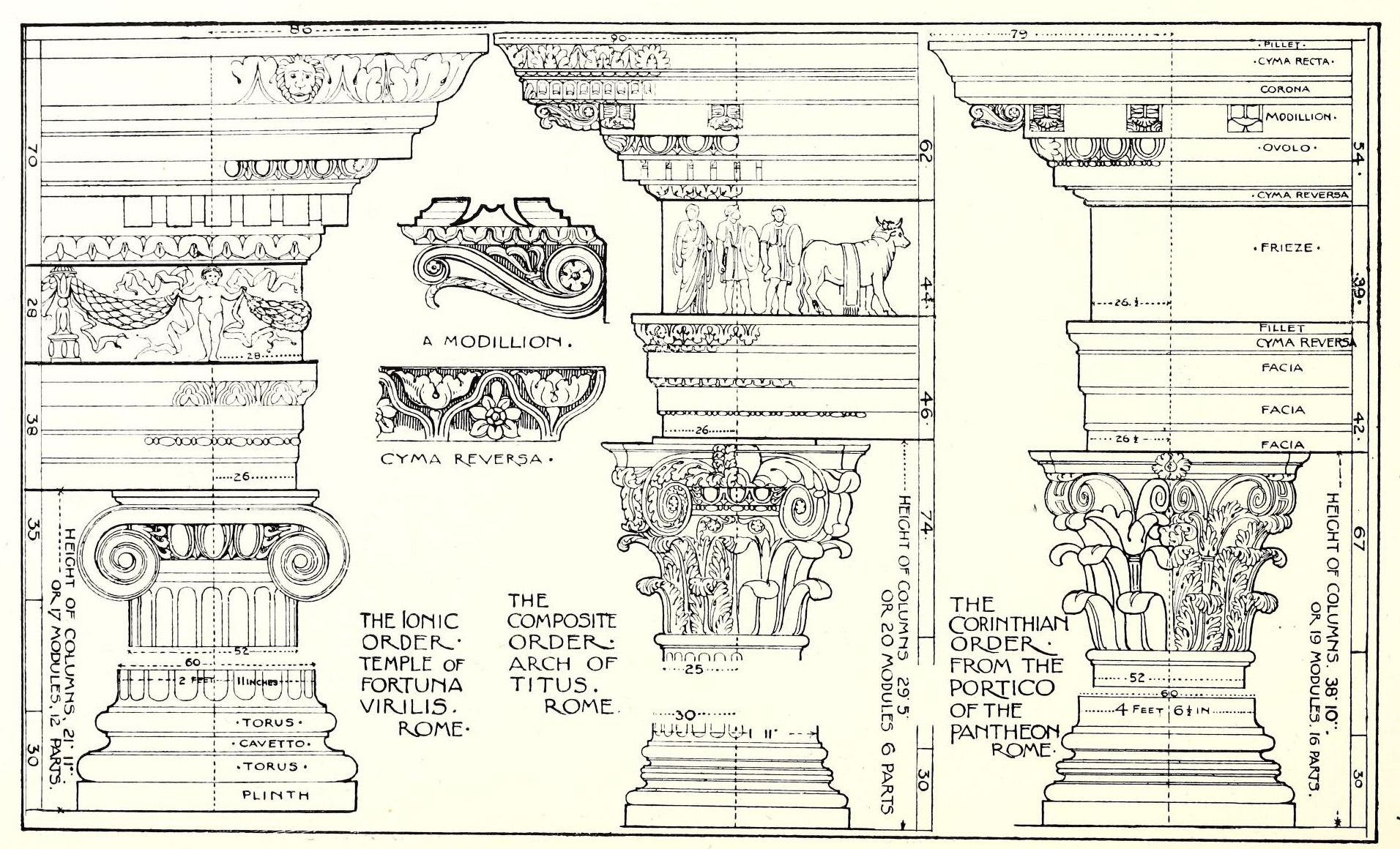 Elements Of Roman Architecture Roman Architecture Architecture Drawing Architectural Prints