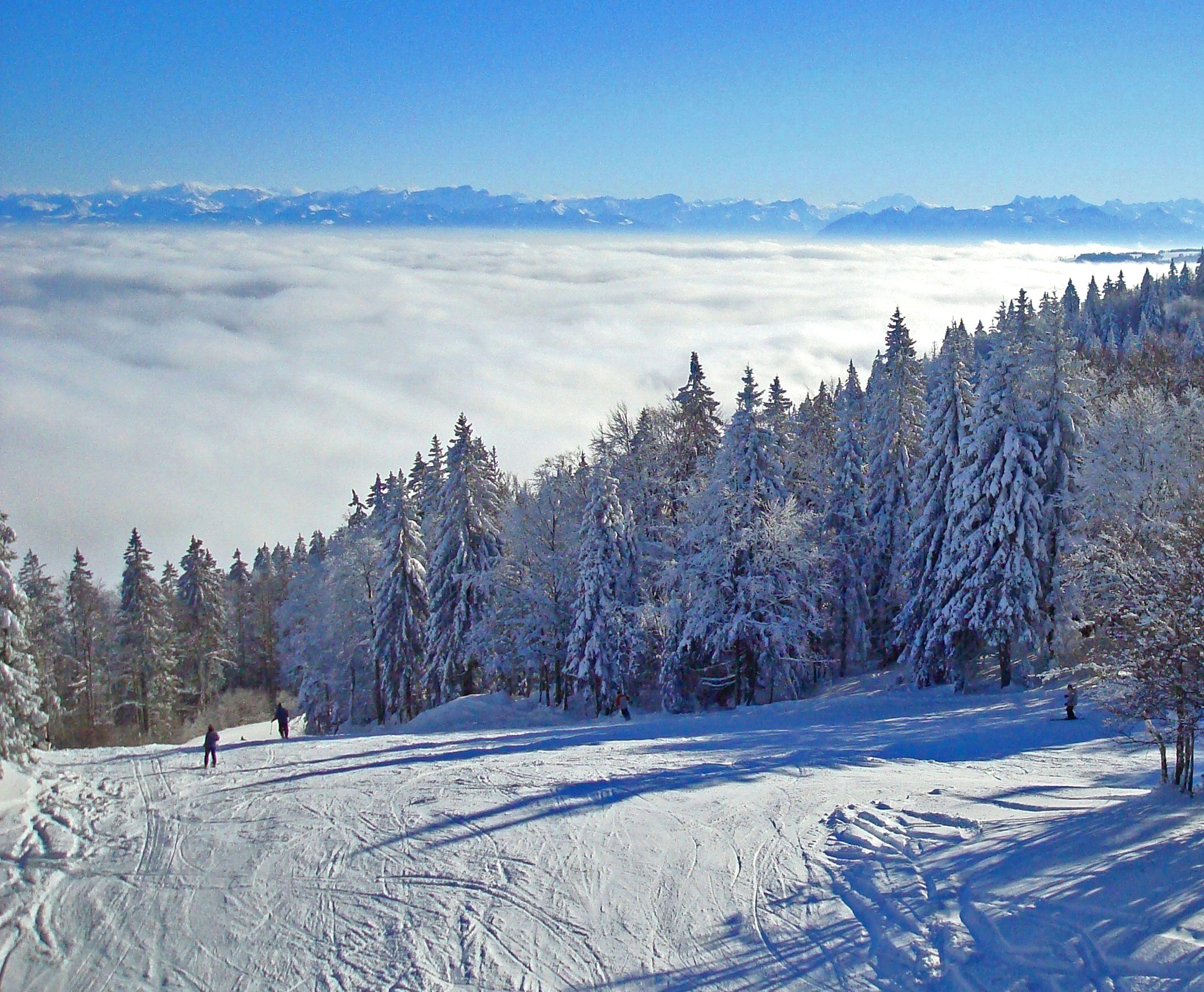 Ou Choisir Votre Location De Chalet Dans Le Jura Pour Les Vacances En 2020 Metabief Vacances Montagne Stations De Ski
