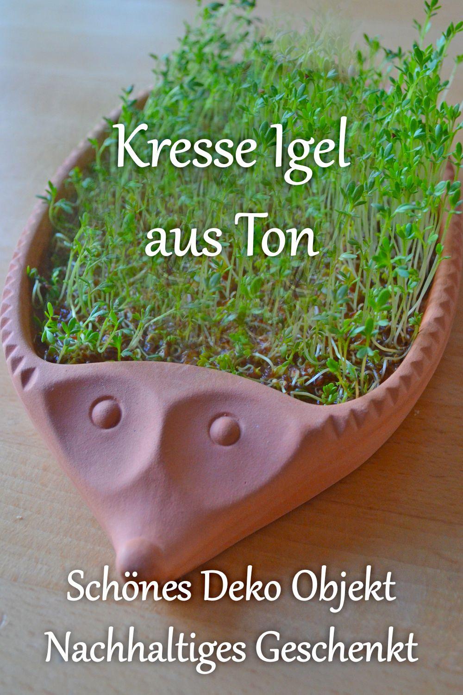 Küchen Zum Mitnehmen : kresse igel aus ton der kresse igel ist ein h bsches ~ Watch28wear.com Haus und Dekorationen