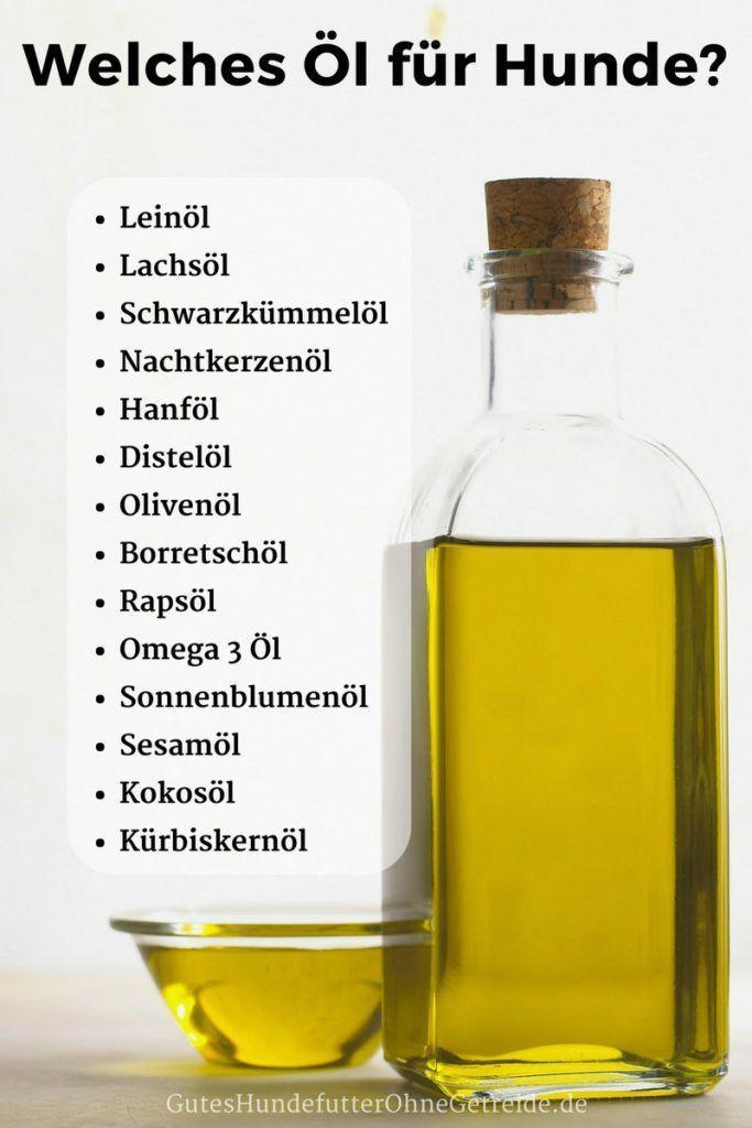 Öl für Hunde - Welche Öle sind gesund für meinen Hund? #animalsandpets