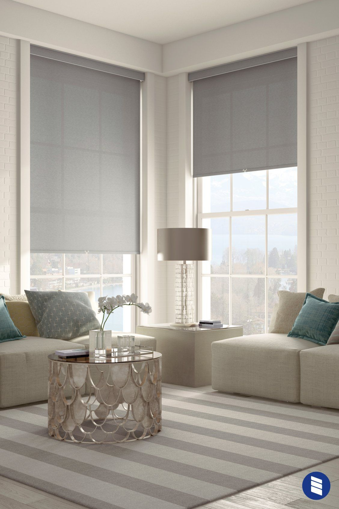 Roller Shade Solar With Images Window Treatments Living Room