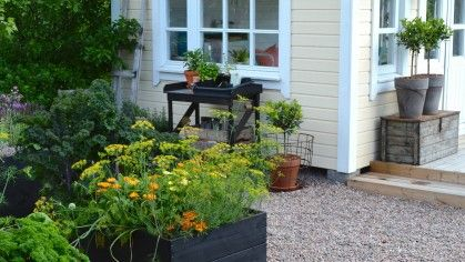 puutarhan työkalut Archives - Viherpeukalot blogi