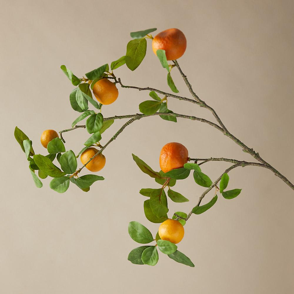 Faux Orange Tree Branch Terrain Orange Tree Tree Branches Tree Stem
