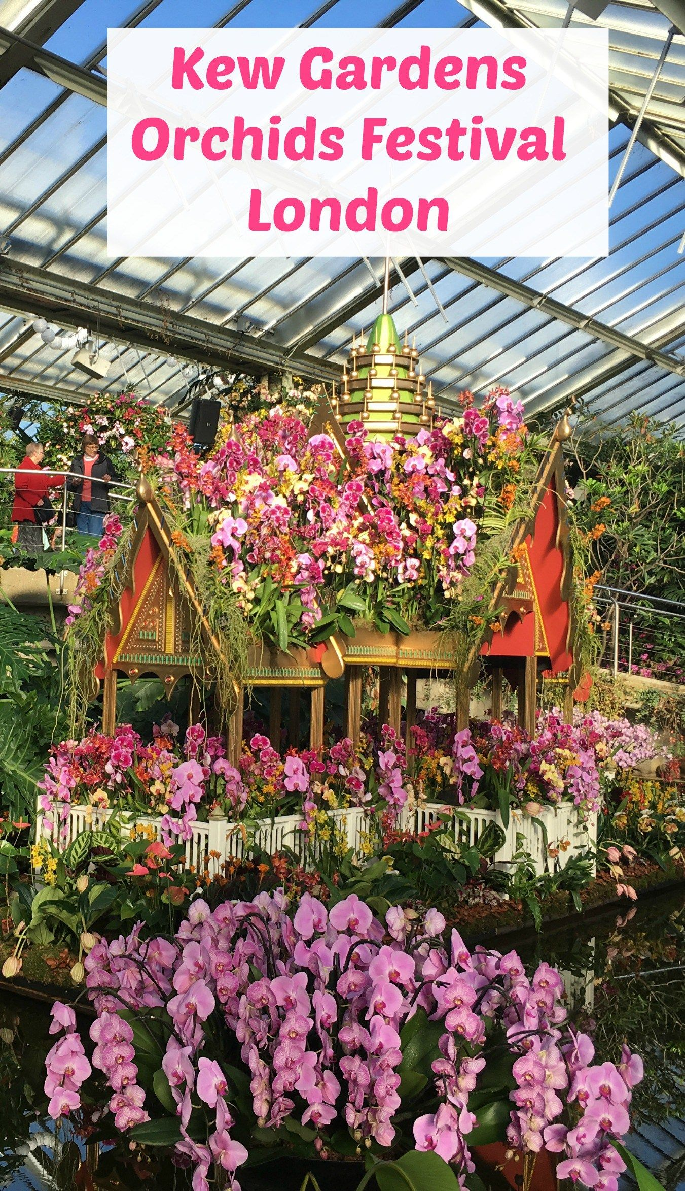 Kew Gardens Orchids Festival, London: Why visit and what\'s to see ...