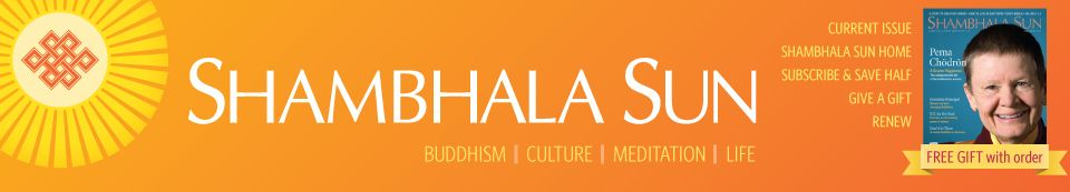 Shambhala Sun - Building a Community of Love: bell hooks and Thich Nhat Hanh