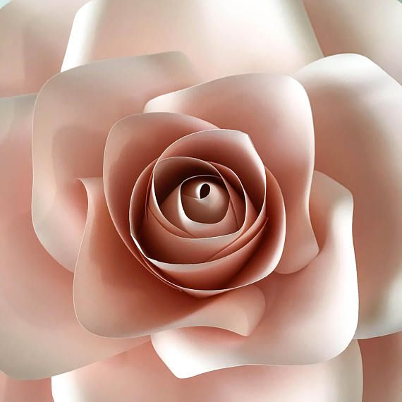 Pdf new large rose paper flower template w rose bub center pdf new large rose paper flower template w rose bub center flowers pinterest giant paper flowers pdf and paper paper mightylinksfo