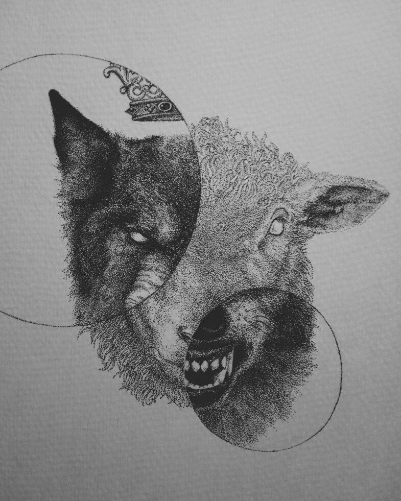 You Know This World If Full Of Evil People Wolfdrawing Sheepdrawing Wolf Sheep Sketch Angry Surrealism S Sheep Tattoo Black Sheep Tattoo Sheep Drawing