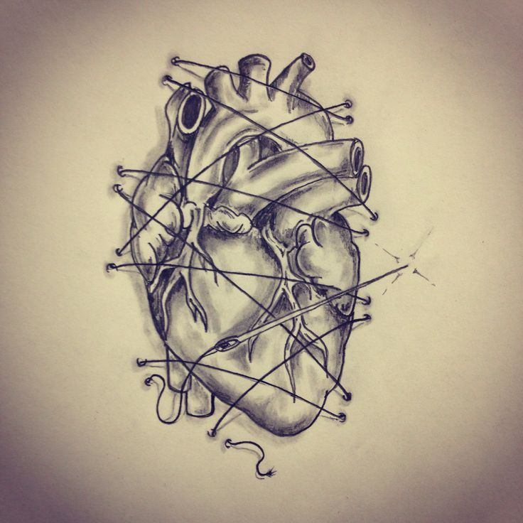 anatomical heart sketches - Google Search | ink | Pinterest | Heart ...