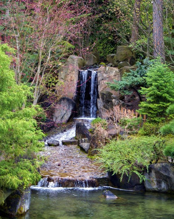 omg the Japanese Gardens at Manito Park in Spokane, WA also has a waterfall?