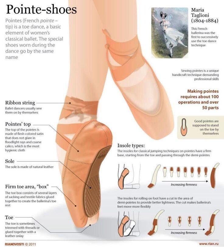 The anatomy of a pointe shoe | Ballet | Pinterest | Pointe shoes and ...