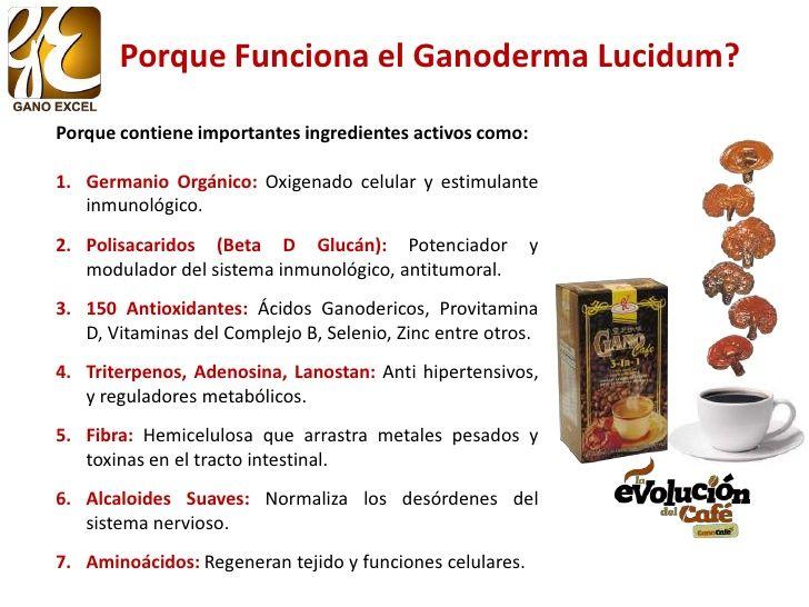 Beneficios Del Ganoderma Lucidum En La Salud Beneficios Salud Salud Y Bienestar