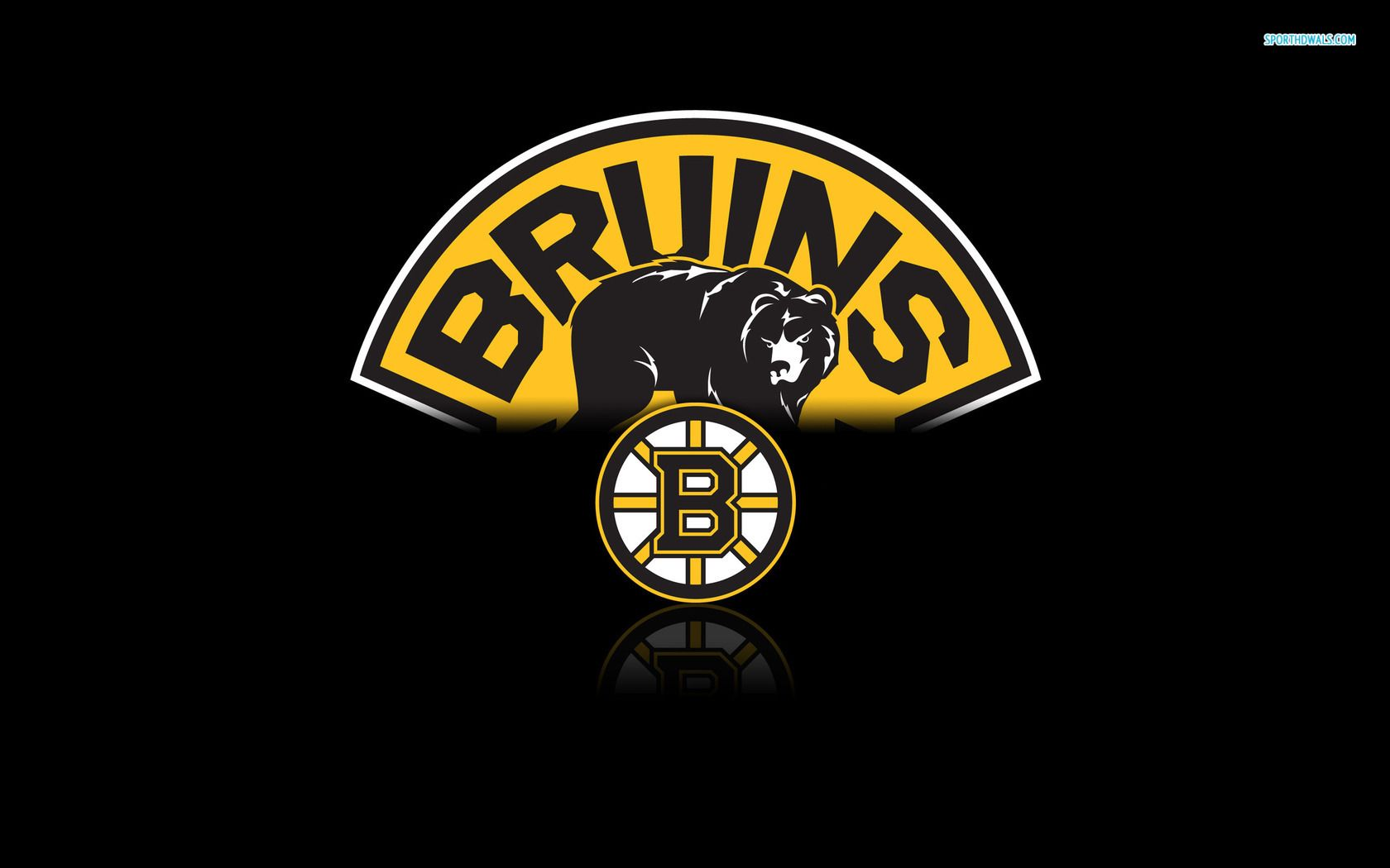 Don T Poke The Bear Boston Bruins Wallpaper Boston Bruins Funny Boston Bruins Logo