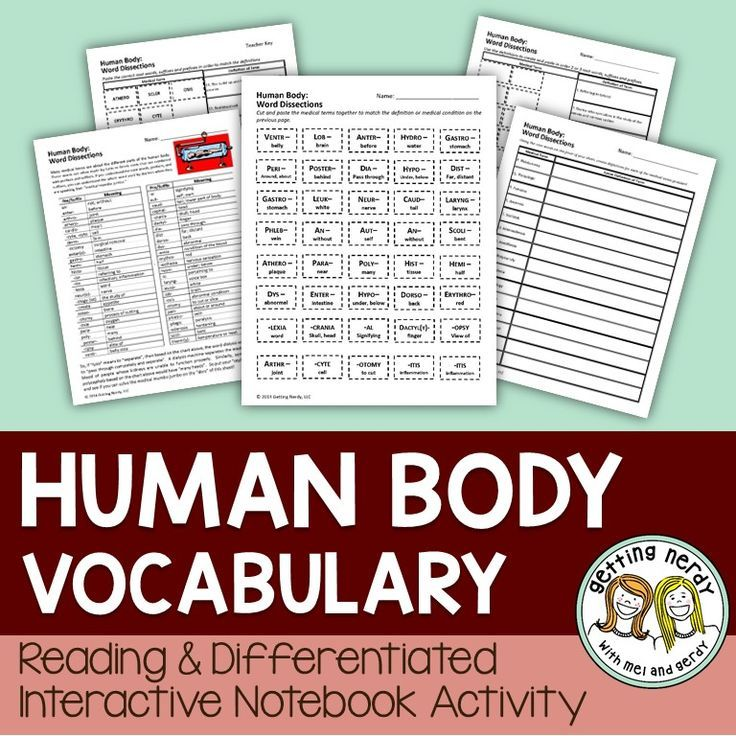 Human Body Differentiated Vocabulary Secondary Science Teaching
