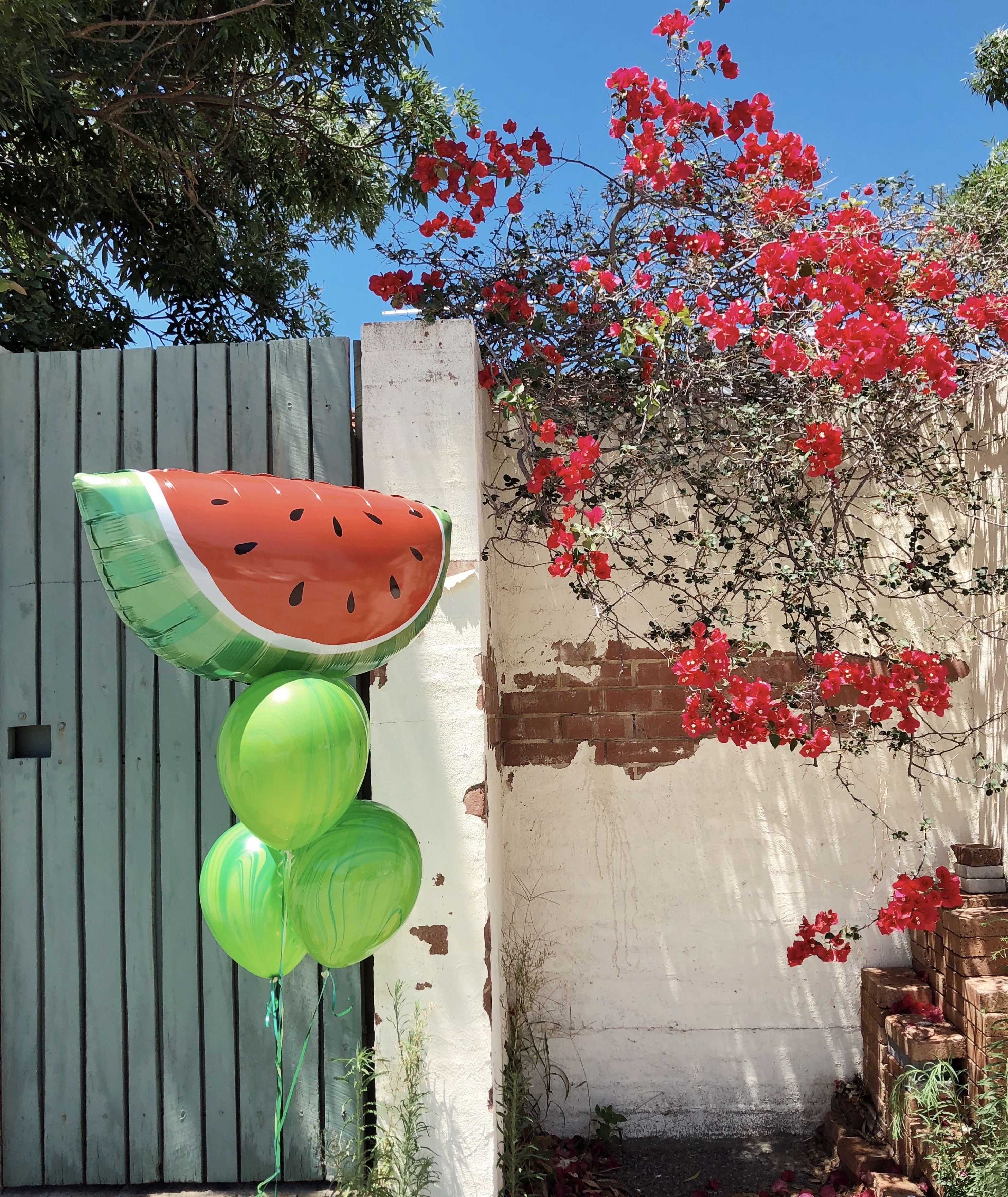 Watermelon Balloon Bouquet Party stores