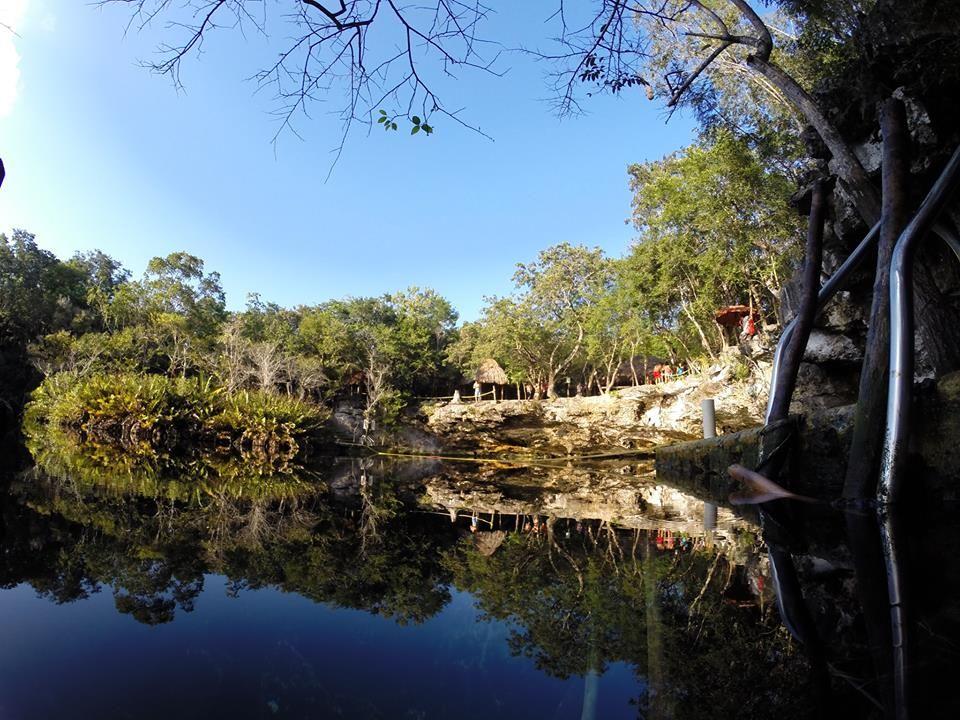 Cenote el eden ponderosa cenote jardin de eden for Cancion en el jardin del eden