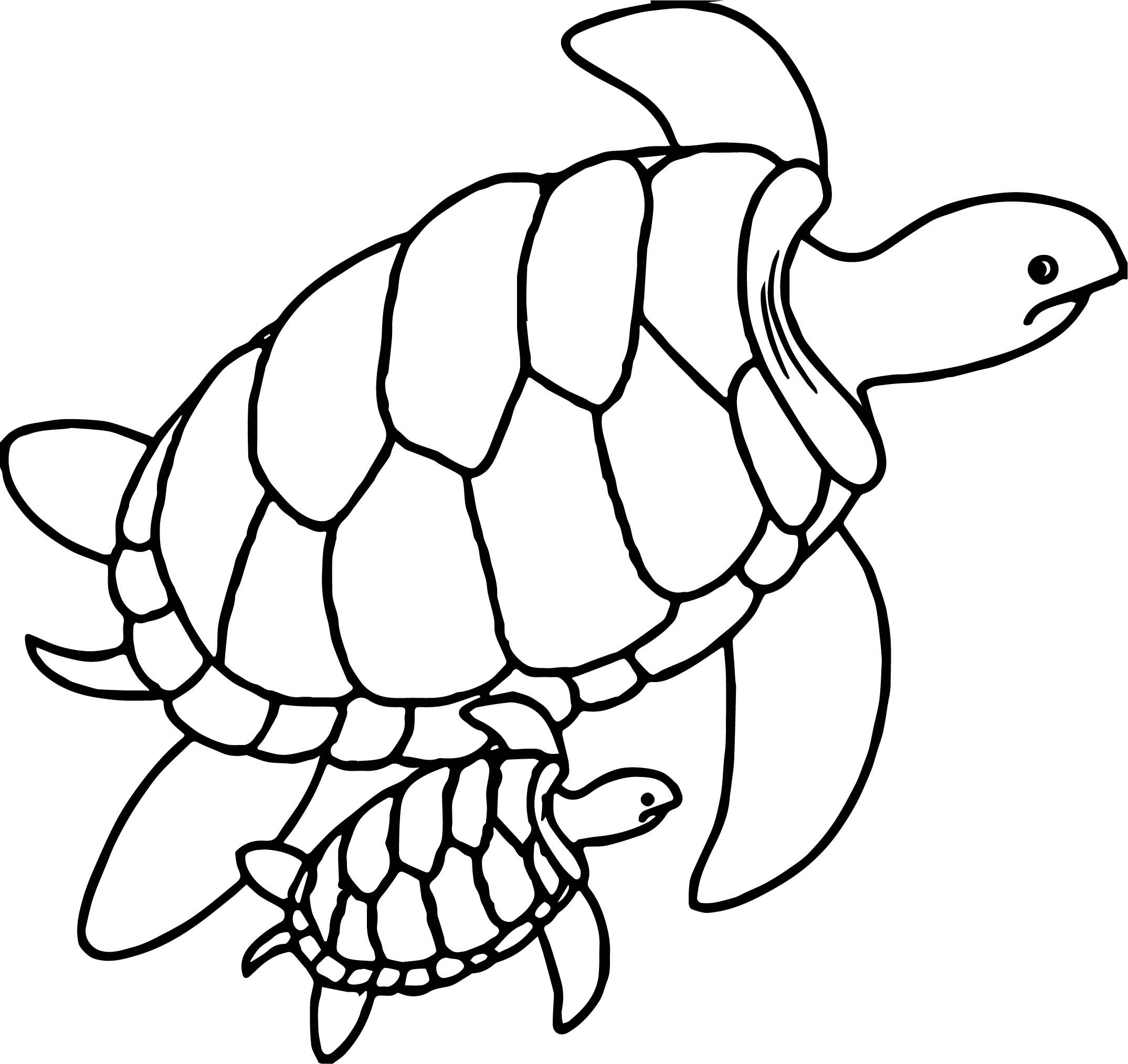 Printable Turtle Coloring Pages Di 2020