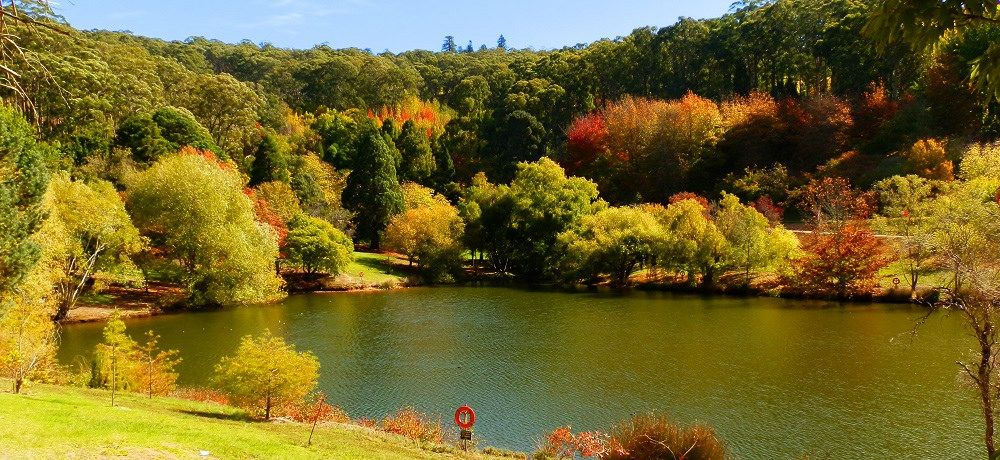 Mount Lofty Botanic Gardens Main Lake Lakes Australia and South