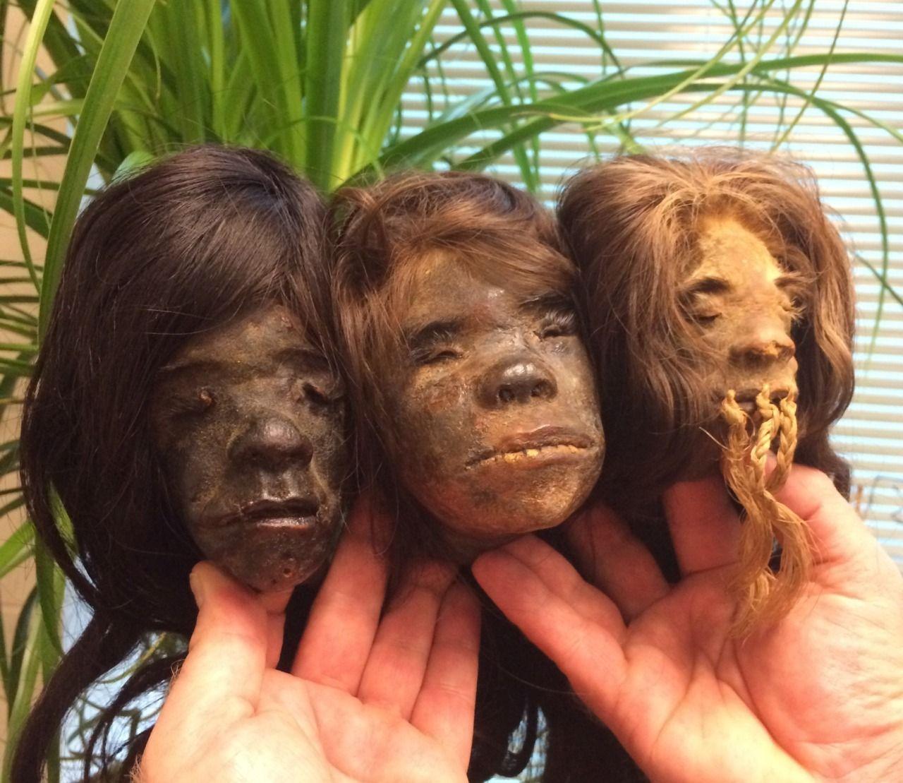 Authentic Shrunken Heads. Tsantsa, Jivaro, Shuar, Shrunken Head Book.   Shrunken head, Shrunken heads for sale, Headed
