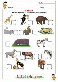 Herbivores, Carnivores, Omnivores | Educación | Pinterest ...