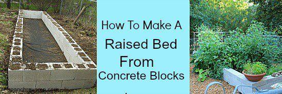 Diy Raised Bed Using Concret Blocks Vegetable Gardening 640 x 480
