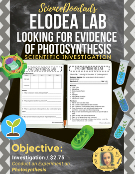 In this activity, students will conduct a scientific