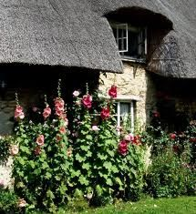 Pretty cottage in Minster Lovell.