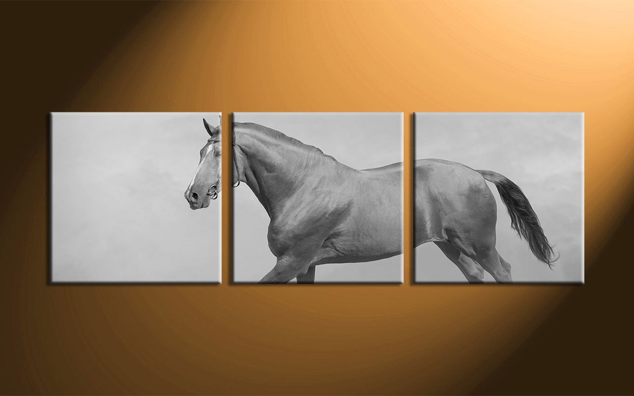 3 Piece Black And White Horse Ideas Inspirational Wall Art Diy Inspirational Wall Art Wall Art Decor