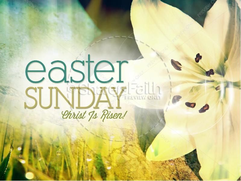 Easter Sunday Lily PowerPoint Easter is so true to me - religious powerpoint template