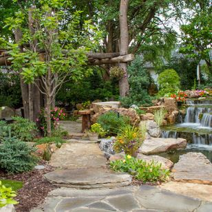 Exceptional Aquascape Inc.   St. Charles, IL, US 60174